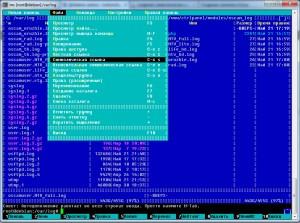 Создание символических ссылок на лог файлы